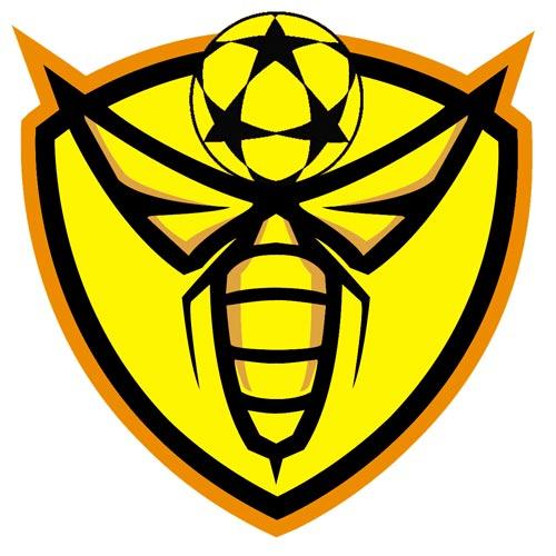 Human Beehive